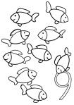 graphisme poissons