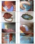 images sequentielles