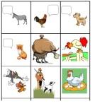 langage fonction
